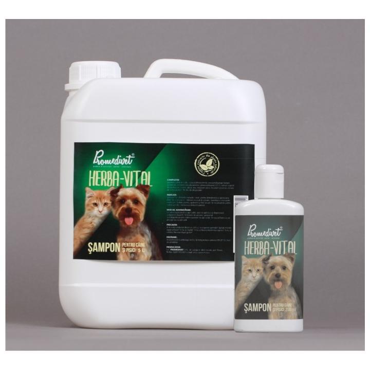 Sampon pentru caini si pisici Herba-Vital