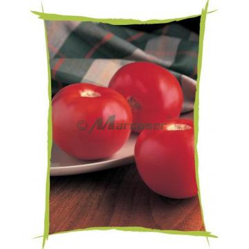 Seminte de tomate Bobcat F1