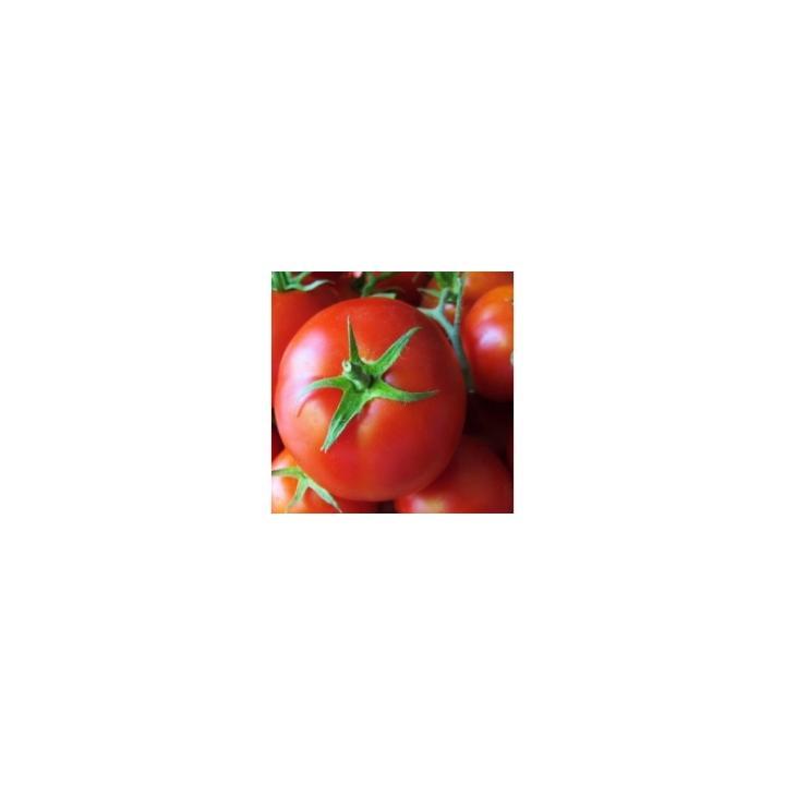 Seminte de tomate Sandoline (500 sem)