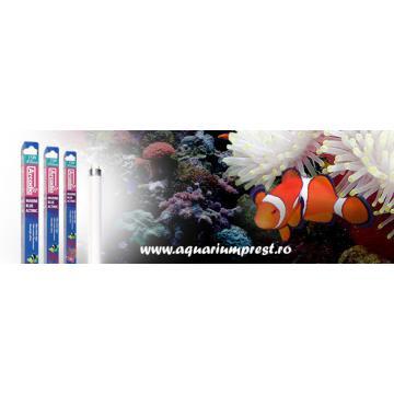 Lampa acvarii Marine Blue 420 Actinic Lamp T8 15W