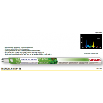 Neon acvariu Tropical River 8500K T8 15W