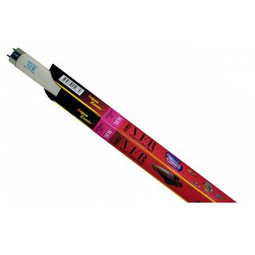 Neon acvariu Violet Fusion Red T8 38W