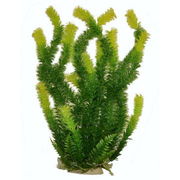 Planta acvariu Ceratophillum 2 nuante de verde PP314 36cm