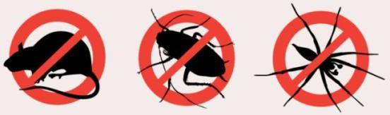 Servicii DDD (Deratizare, dezinfectie, dezinsectie )