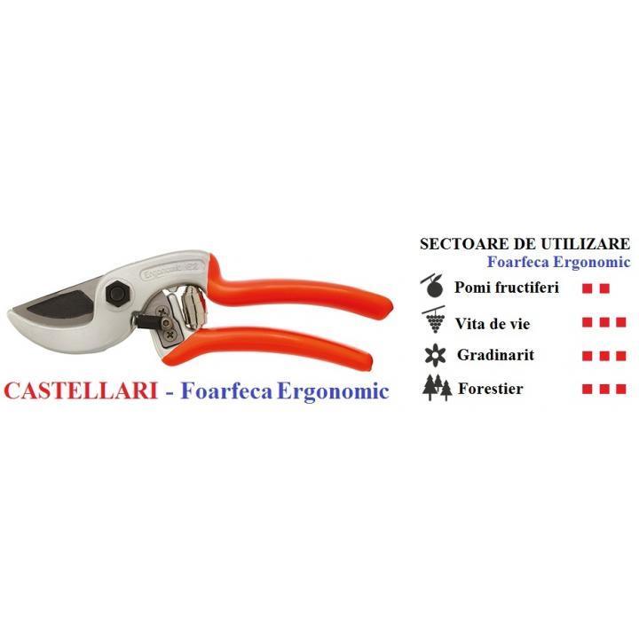 Foarfeca de mana profesionala Castellari Ergonomic 21 cm