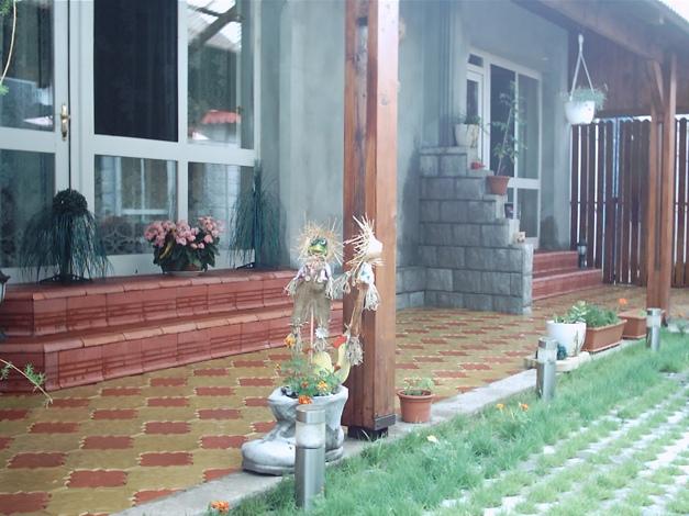 Ornamente de gradina din beton