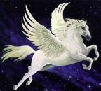 Portofoliu Pegasus Restaurari