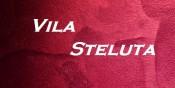 Vila Steluta