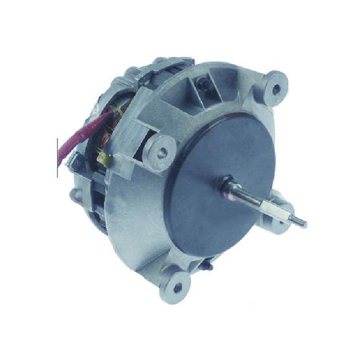 Motor ventilator cuptor Lainox, Rosinox