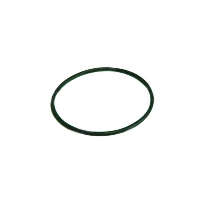 Garnitura o-ring capac pompa Askoll M231