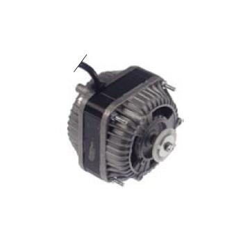 Motor 10W
