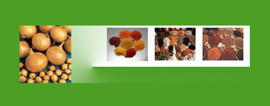 Aditivi alimentari pentru industria carnii