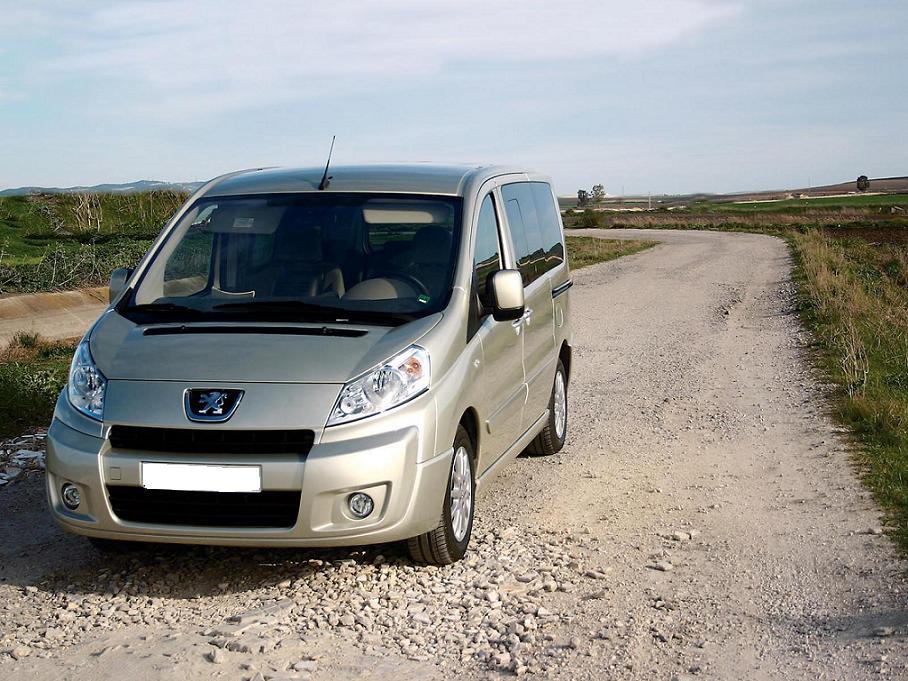 Scuturi metalice Peugeot