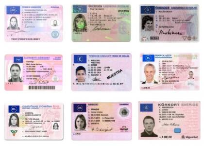 UE,Română permise de conducere +27603753451