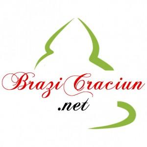 SC EVOLVE IT SRL - BraziCraciun.net