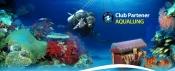 Filmari subacvatice