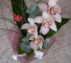 Buchete orchidee