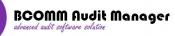 Audit financiar