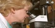 Laborator analize medicale Bacau