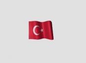 Traduceri autorizate limba turca