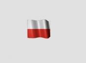 Traduceri limba poloneza