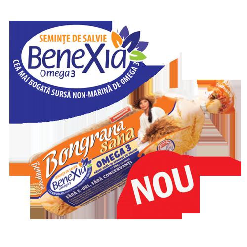 Paine Bongrana Sana