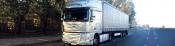 Transport marfuri alimentare Timisoara