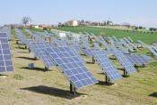 Panou solar fotovoltaic Jinko 245 W