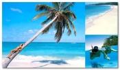 Vacanta Republica Dominicana