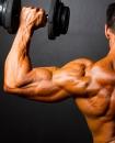 Bodybuilding Arad