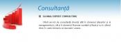 Consultanta afaceri Pitesti